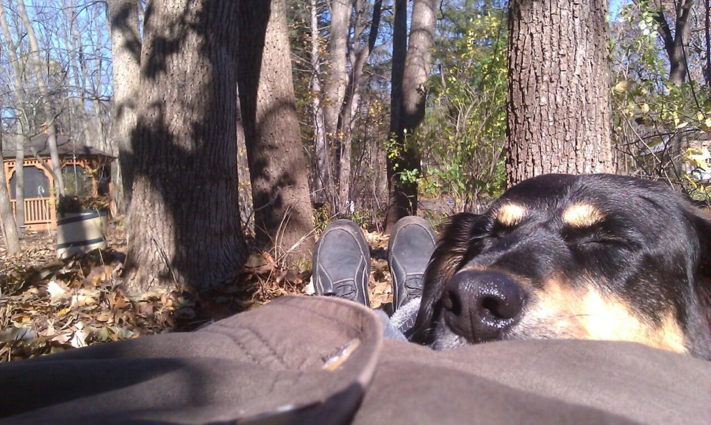 We tromped through the woods. We're pooped!