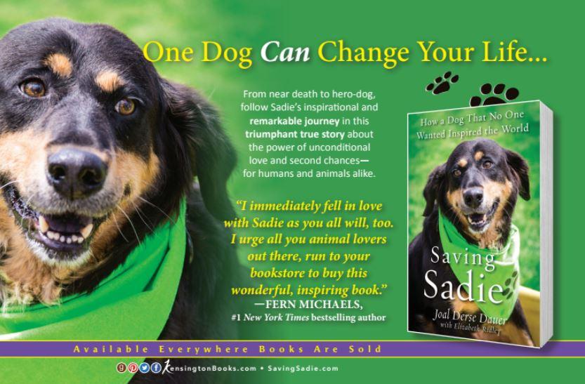 Sadie-banner