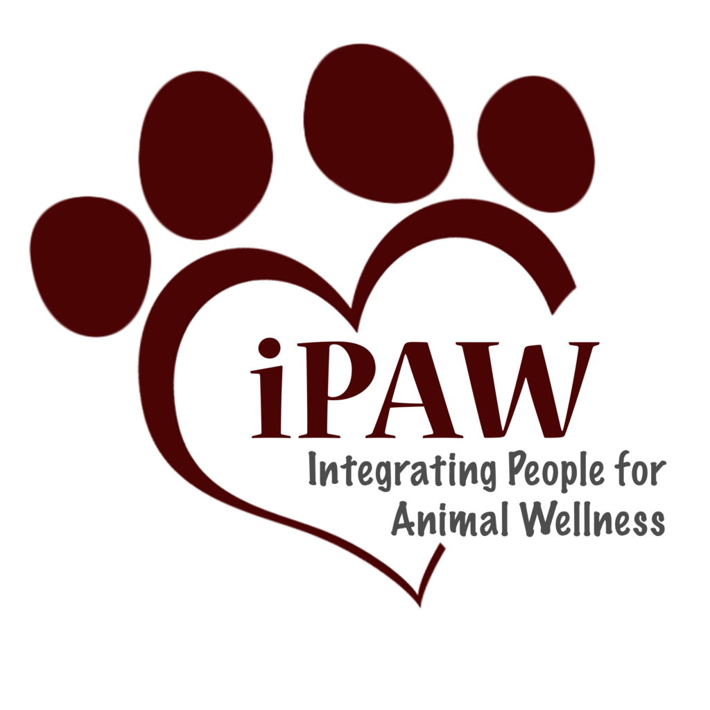 ipaw-logo-transparent-1024x1024